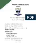 Características Del Derecho de Representacion