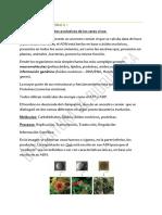1° clase - Bioquìmica degrabada