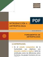 Antropología básica