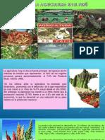 Diapositivas de Derecho de Aguas