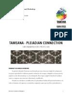 Manual Tameana 2 .pdf