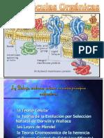Bioelementos y Biomolculas Abb 2016