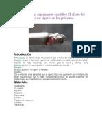 Informe de un experimento científico El efecto del humo del cigarro en los pulmones.docx
