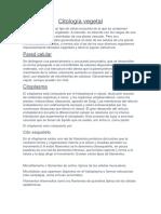 Citología vegetal.docx