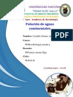 Polucion de aguas continentales - microbiologia acuatica UNPRG