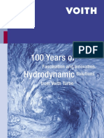100 years of hydrodynamic.pdf