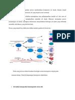Hematopoiesis Merupakan Proses Pembentukan Komponen Sel Darah