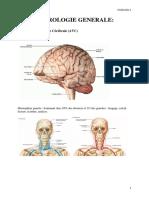 Neuro Logie