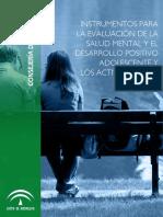 INSTRUMENTOS_DESARROLLO POSITIVO.pdf