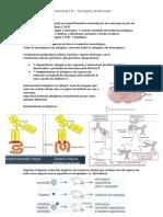 [IMUNO] Imunologia Antígeno-Anticorpo - RESUMO