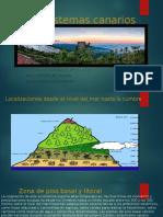EcosistemasCanariosTrabajo.pptx