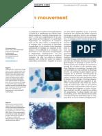 Cytologie en Mouvement