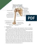 Anatomi Humerus.docx