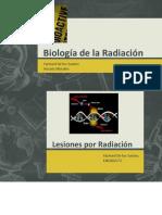 Biologiadelaradiacion 150319120824 Conversion Gate01