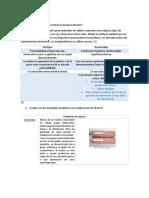 cuestionario practica 5.docx