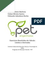 Livro-ExerciciosResolvidosCalculo_VersaoAtual.pdf