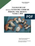 Catalogo de Los Boletaceos Del Cofre de Perote