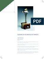Lesiones Transito.pdf