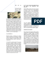 217632659 Reporte de Visita a La Planta Biofisica de Tratamiento de Agua de San Borja