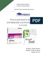 Informatica proiect individual.doc
