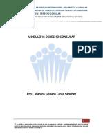 1ra, Sección de Clases. Mod. v, Derecho Consular