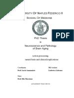 Labruna_Neuroscienze.pdf
