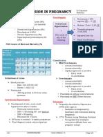 HPN IN PREG.pdf