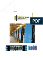 Manual Soda Cáustica.pdf