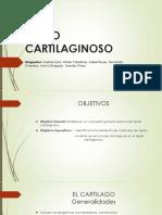 TEJIDO CARTILAGINOSO diapositivas