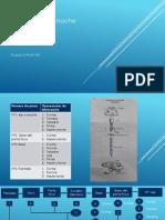 Diagrama de Fabricaciòn de Producto