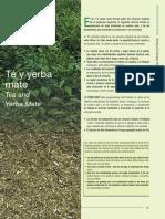 Patricia Parra 2006_te y yerba mate