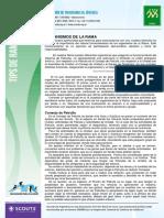 Organismos de la Rama.pdf