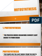 Photosynthesis(Light Dependent Reaction and Light-Independent Reaction)