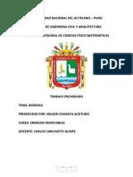 Trabajo Biomasa de Nelson Churata Aceituno