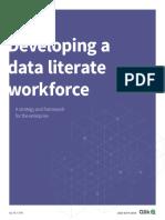 Qlik - Education_Data Literacy Program_Strategy and Framework_October 2018