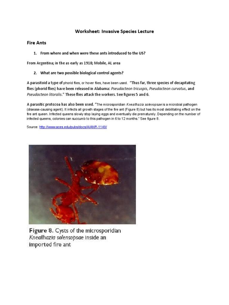 httpsimgv21fscribdassetsimgdocument39 – Invasive Species Worksheet