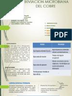 LIXIVIACION MICROBIANA DEL COBRE.pptx