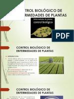 Control Biológico de Enfermedades