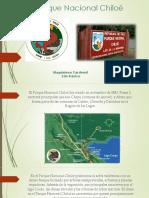Parque Chiloe Magdalena