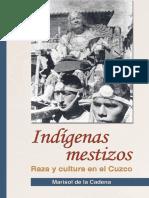 INdigenas mestizos- Marisol de la Cadena.pdf