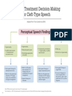 Guide to Treatment Decision Making for Cleft Type Speech