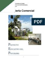 pe_icomercial.pdf