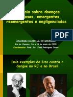 Dengue Anm 2005