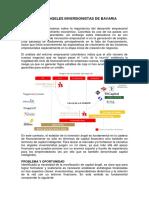 BRIEF_RED_DE_ANGELES_INVERSIONISTAS.pdf