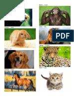 15 Animales en Kiche