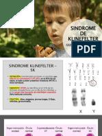 Sindrome de Klinefelter Ok