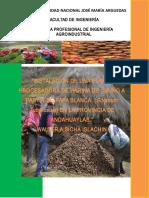 """INSTALACIÓN DE UNA PLANTA PROCESADORA DE HARINA DE CHUÑO A PARTIR DE PAPA BLANCA  (Solanum Tuberosum) EN LA PROVINCIA DE ANDAHUAYLAS."""".docx"""
