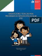 orientacionesPIE2013.pdf