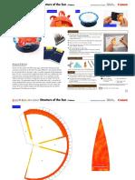 Estructura-sol.pdf