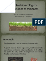 Aspectos Bio-ecologicos Relacionados as Minhocas